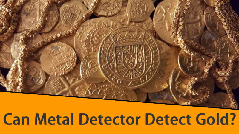 Can Metal Detector Detect Gold