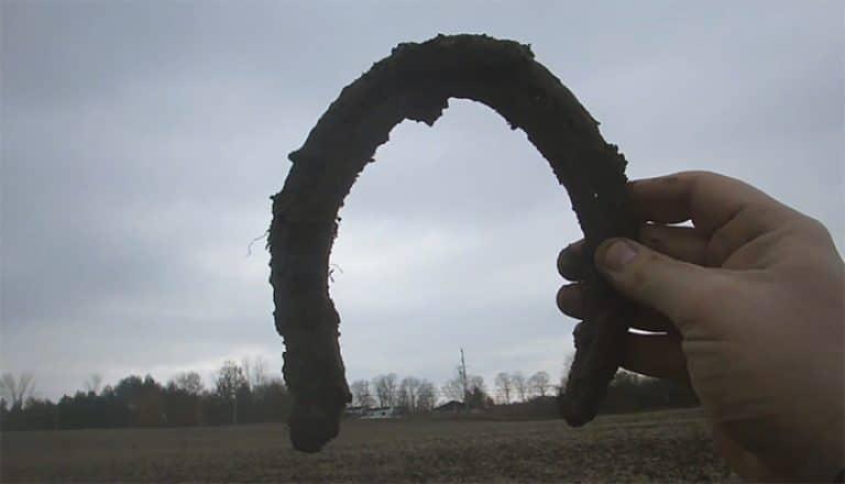 metal detecting in a field